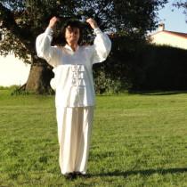 Qi Gong enchainements, Qi Gong taoistes, Qi Gong méditations